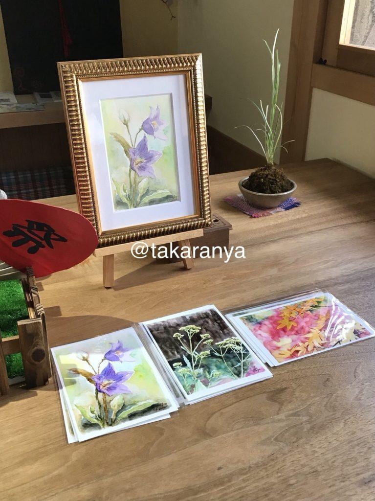キキョウと秋のお花のポストカード